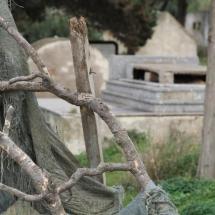 Vues cimetière