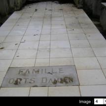 ORTS-Damien