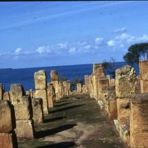 Tipaza.ruines_romaines