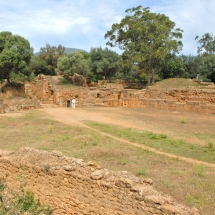 Le parc archéologique de Tipaza
