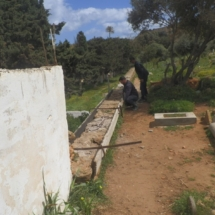 mur-plateau1