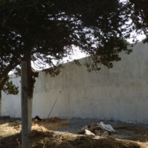 mur2-finition-4